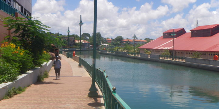 Missão Barbados | 2011 | Paisagismo
